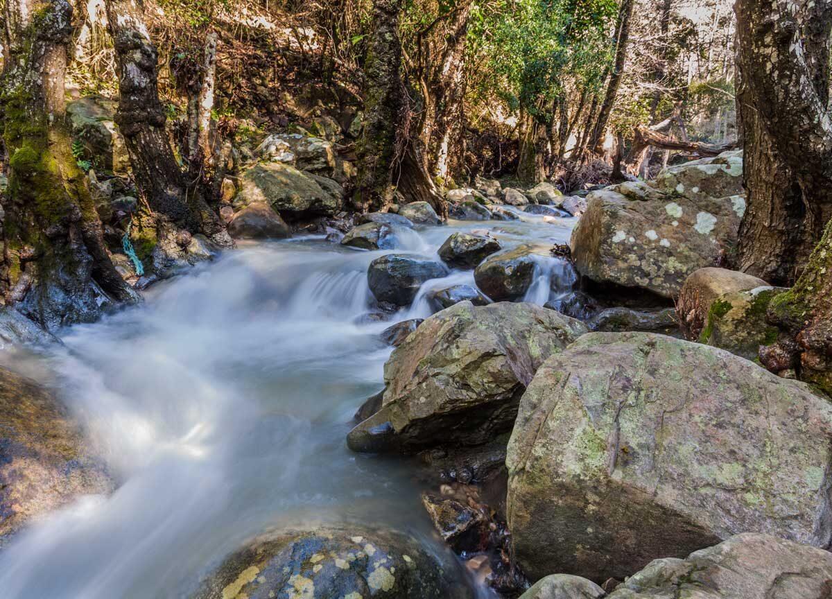 Río Guadalmesí - PN Los Alcornocales