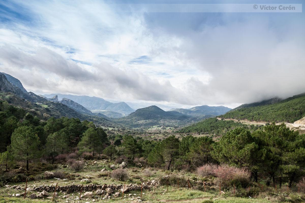Mirador del Boyar - PN Sierra de Grazalema